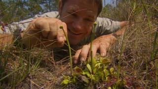 Deadly 60 - January 27, 2016