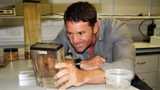 Deadly 60 - February 1, 2016