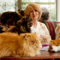 The Woman With 40 Cats... And Other Pet Hoarders